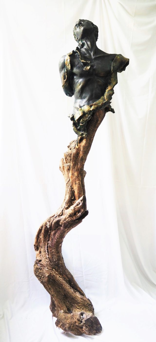 Tronco d'ulivo e resina - Olive tree trunk and synthetic resin 200 m x 40cm x 40 cm 2015